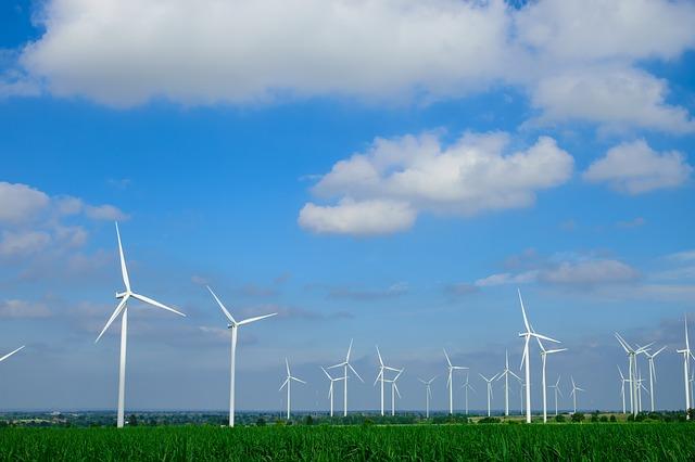 pole větrných turbín
